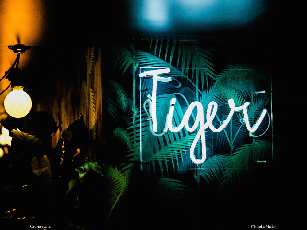 Le Tiger, Paris
