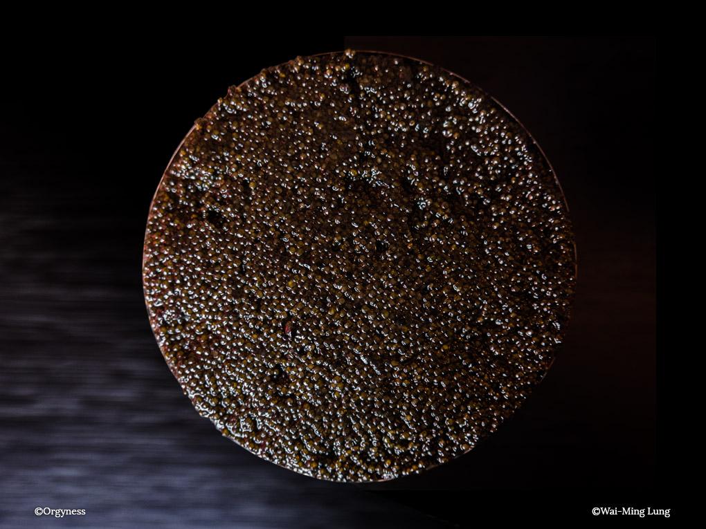 Caviarologie