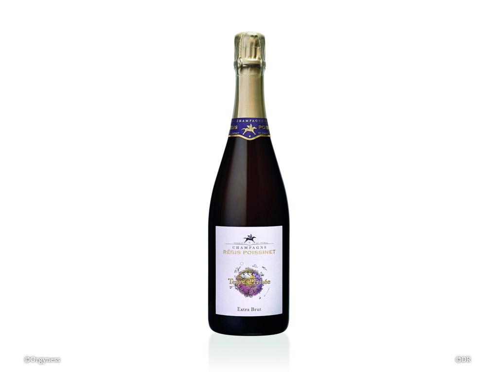 Champagne Régis Poissinet, Terre d'Irizée